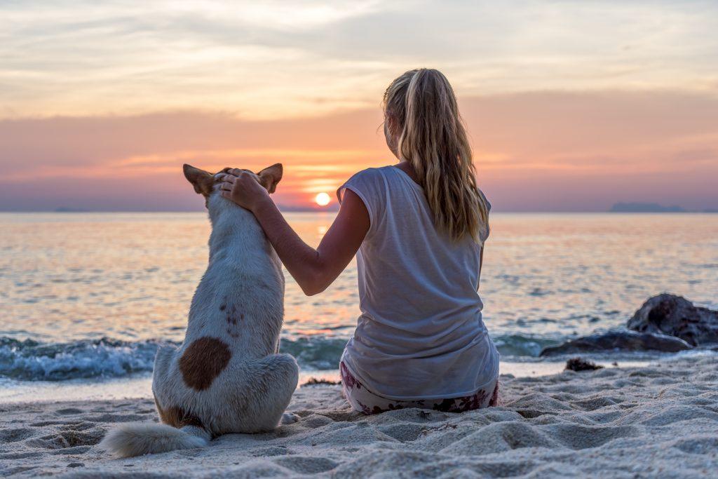 dog-beach-goodbye