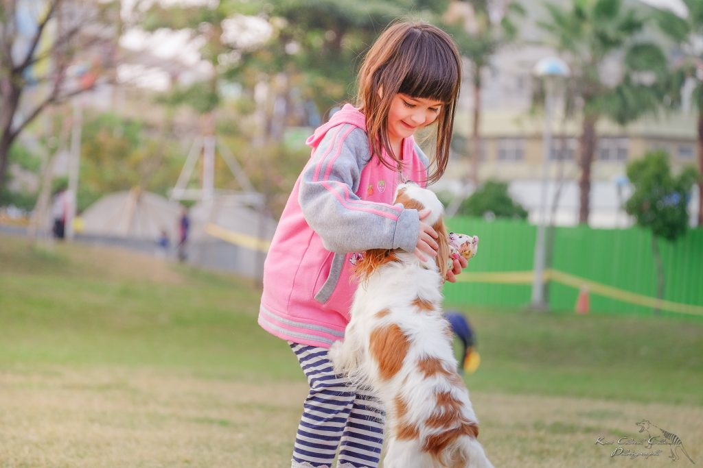 kid safety with dogs