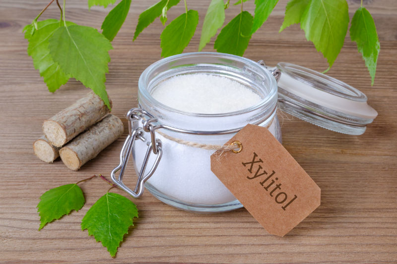 Xylitol - sugar substitute toxic for dogs